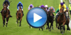 watch Handicap Hurdle 2m 1f online